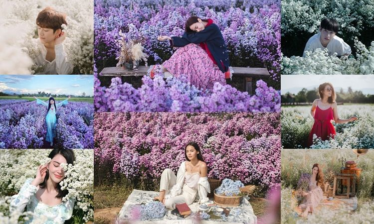 ฮอตทะลุโซเชียล! สวนดอกไม้ที่คนดังฮิตไปถ่ายรูป 'I love flower Farm'