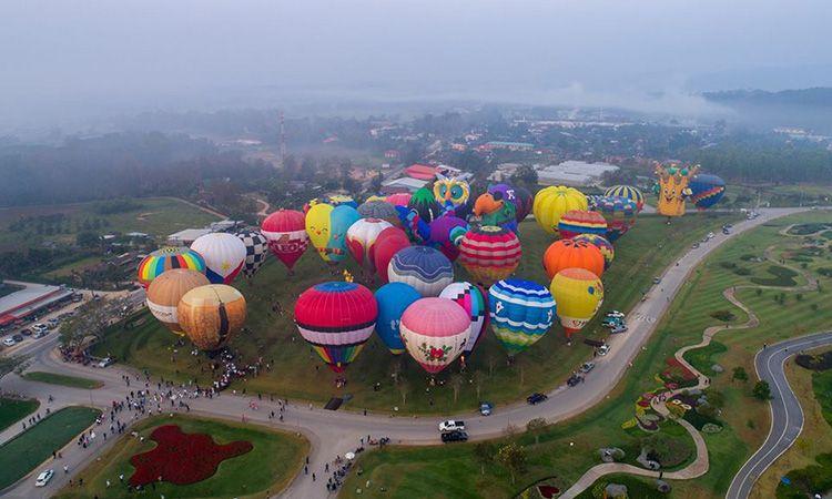 พบกับ Singha Park ChiangRai International Balloon Fiesta 2019 ณ สิงห์ปาร์ค เชียงราย