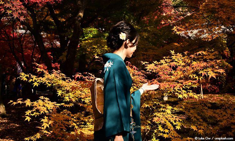 วางแผนเที่ยวญี่ปุ่น ด้วยพยากรณ์ใบไม้เปลี่ยนสี ประจำปี 2019